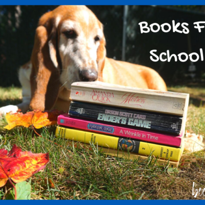 Books From My School Years: Reflecting on the Stories that Shaped my Love of Reading