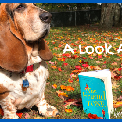 A Look at The Friend Zone by Abby Jimenez, a Contemporary Women's Fiction Novel